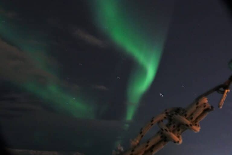 Northern lights cruise on a super yacht in Reykjavik, Iceland 8