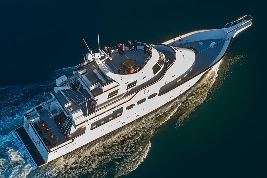get on a boat in reykjavik amelia rose