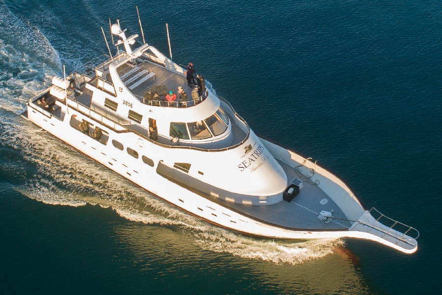 amelia rose yacht