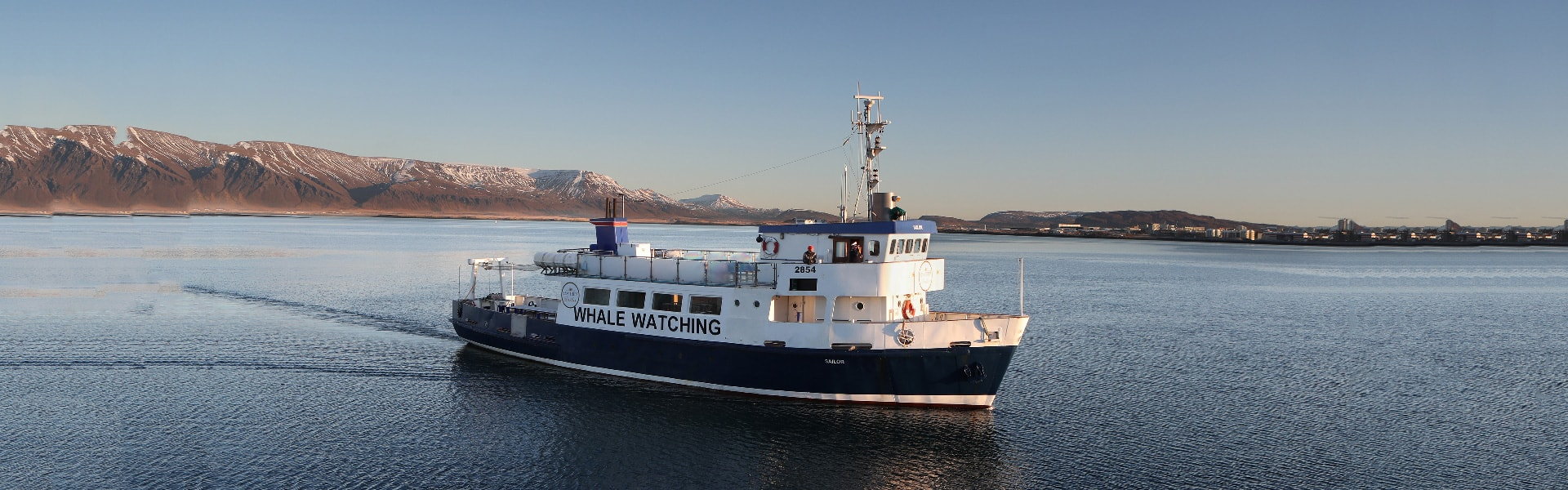 image of the boat Sailor, used for whale watching from Reykjavik in Iceland