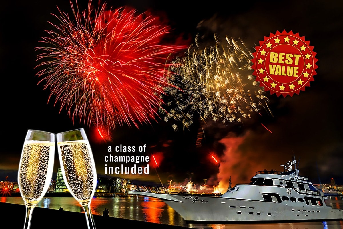 Luxury New Year's Eve Fireworks Cruise on a yacht in Reykjavik Iceland