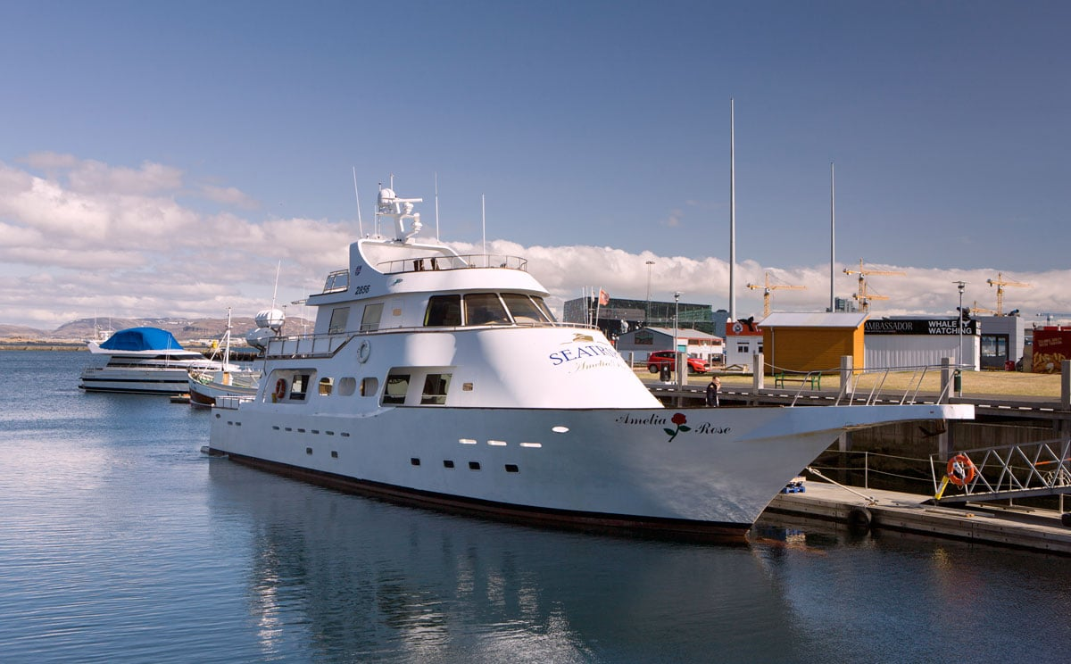 An external view of the super yacht Amelia Rose, currently working out of Reykjavik in Iceland.It is a sunny day and the light reflects off the white ship, reflecting it in the water.